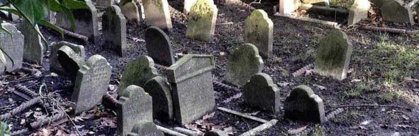 cimitero degli animali londra