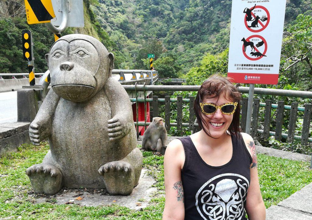 taiwan montagne scimmie