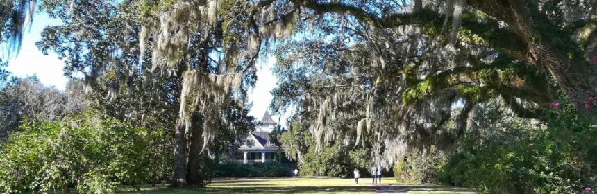 magnolia plantation charleston