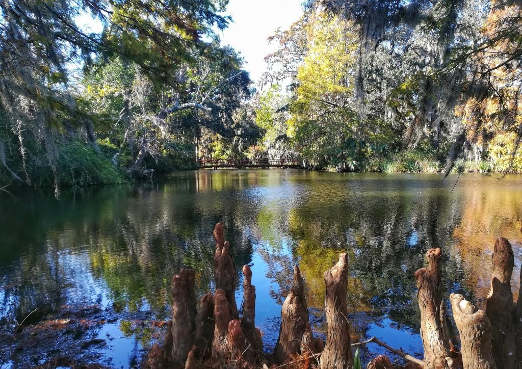 visitare magnolia plantation charleston